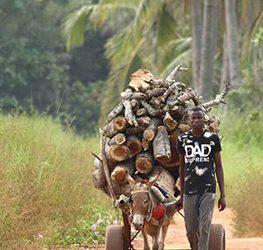 randonnées en haute Casamance