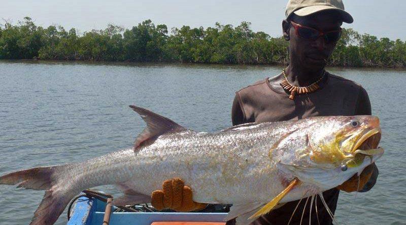 séjour Pêche au sénégal