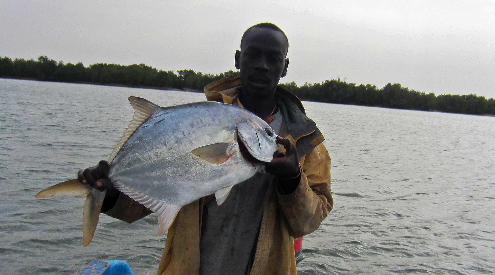 pêche au gros senegal